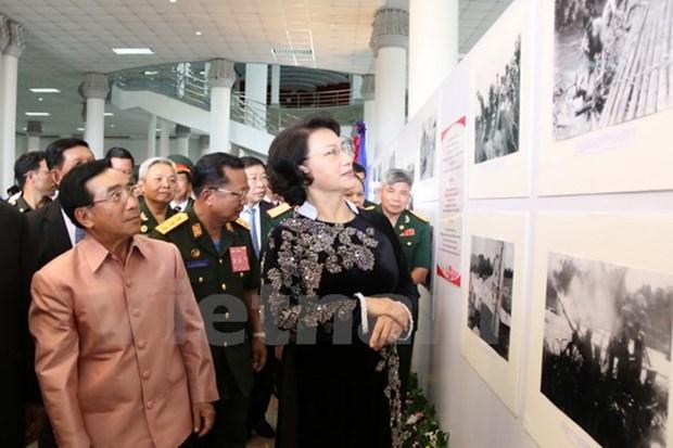 La Piste Ho Chi Minh legendaire sur le sol lao en images hinh anh 1