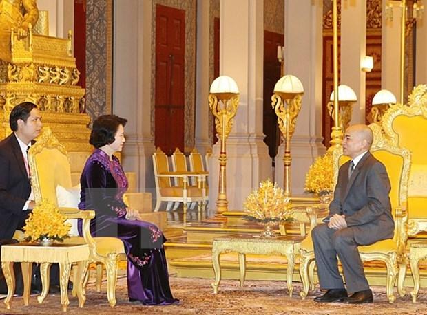 La presidente de l'AN vietnamienne rencontre le roi du Cambodge hinh anh 1