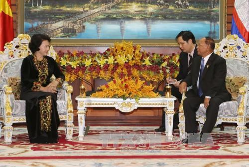 Vietnam et Cambodge plaident pour une cooperation legislative plus effective hinh anh 1