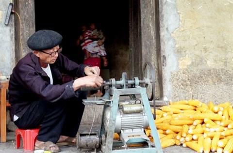 Le declin des orfevres aux mains d'argent a Ha Giang hinh anh 2