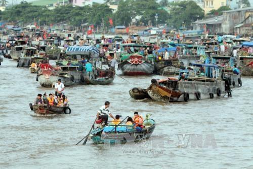 14,5 millions d'USD pour edifier un centre de donnees environnementales dans le delta du Mekong hinh anh 1