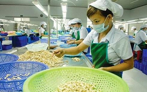 Nikkei : le secteur manufacturier remonte en septembre hinh anh 1