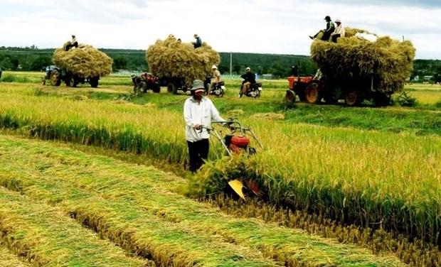BM: L'economie vietnamienne reste stable malgre l'evolution mondiale hinh anh 1