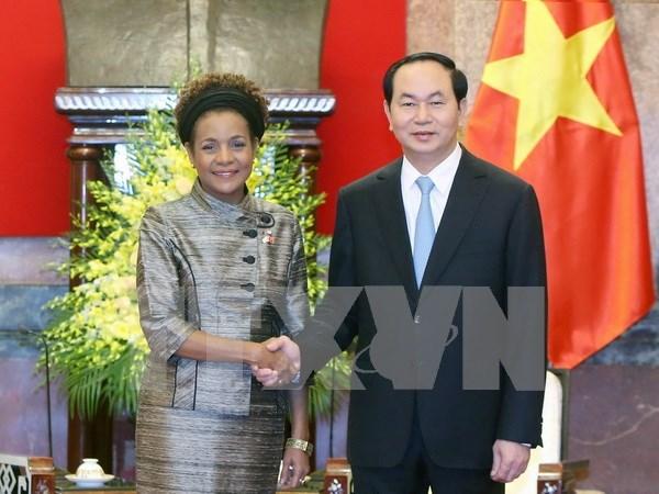 Le Vietnam s'engage a contribuer notablement aux efforts de la Francophonie hinh anh 1