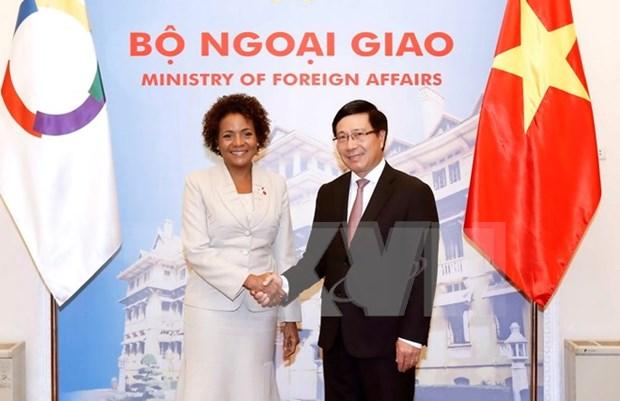 Promotion des relations de cooperation entre le Vietnam et la Francophonie hinh anh 1