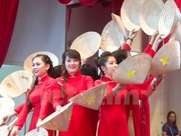 La Journee des femmes vietnamiennes celebree au Mozambique hinh anh 1
