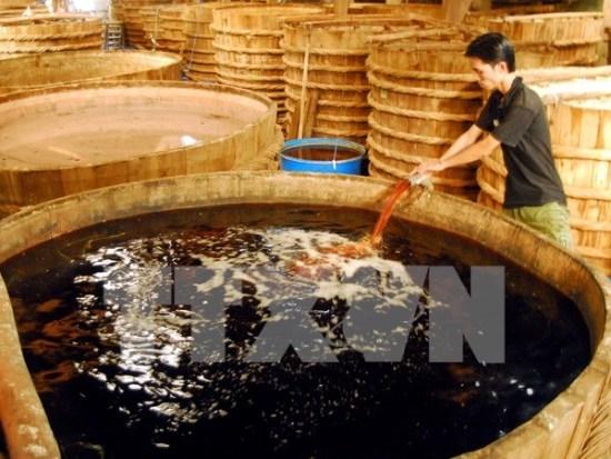 100% des echantillons de saumure de poisson sont surs (officiel) hinh anh 1