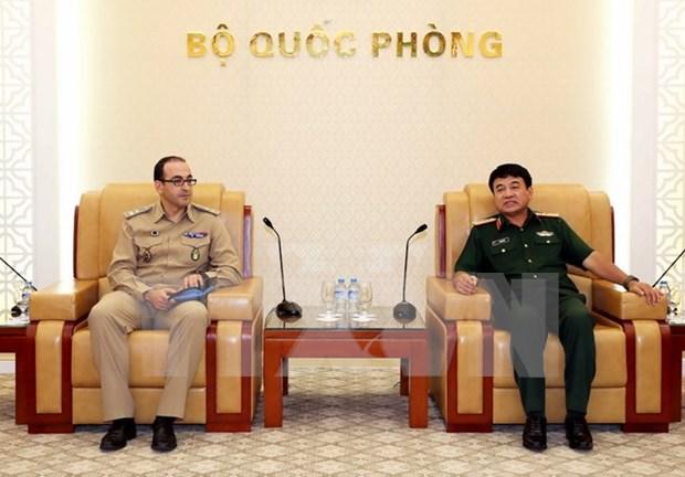 L'ONU soutient le Vietnam dans la participation aux operations de maintien de la paix hinh anh 1