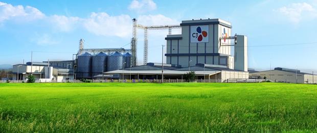 Plus de 31 millions de dollars pour la construction d'une provenderie a Ha Nam hinh anh 1