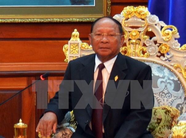 Une delegation du FPV de HCM-Ville en visite au Cambodge hinh anh 1