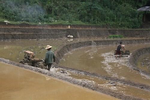 Le Vietnam soutient le developpement socioeconomique des regions peuplees de minorites ethniques hinh anh 1