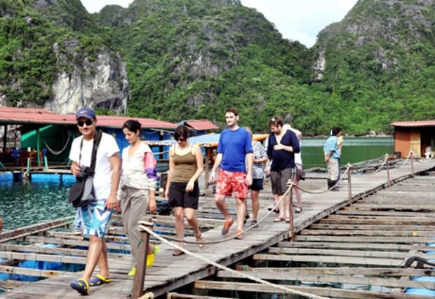 Quang Ninh denombre 7,3 millions de touristes en 10 mois hinh anh 1