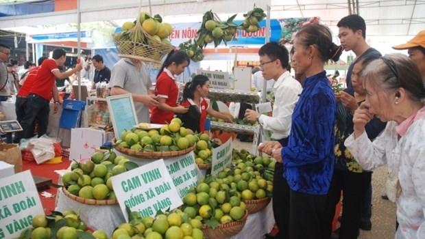 Bientot la 16e foire internationale de l'agriculture AgroViet 2016 hinh anh 1