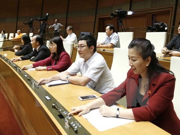 L'AN adopte la resolution sur le plan de developpement socio-economique pour 2017 hinh anh 1