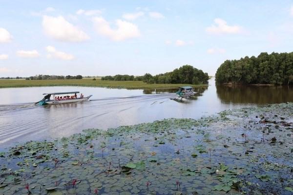 90 milliards de dongs pour developper le tourisme durable dans le parc national de Tram Chim hinh anh 1