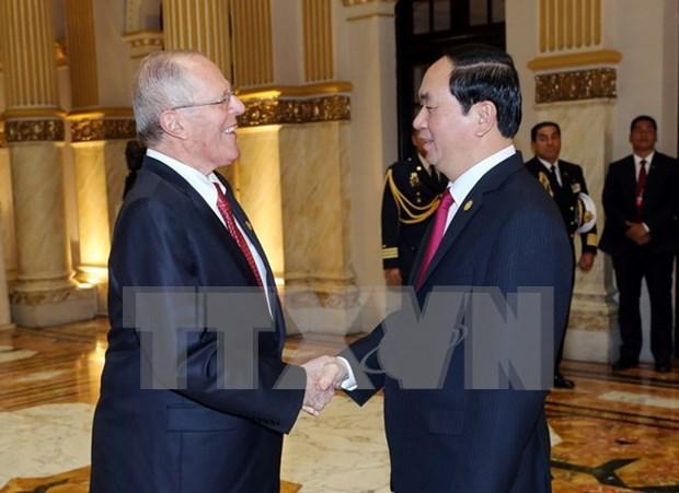 Le president Tran Dai Quang s'entretient avec son homologue peruvien hinh anh 1
