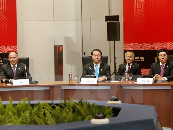 Le president Tran Dai Quang participe a la Semaine de l'APEC 2016 hinh anh 1