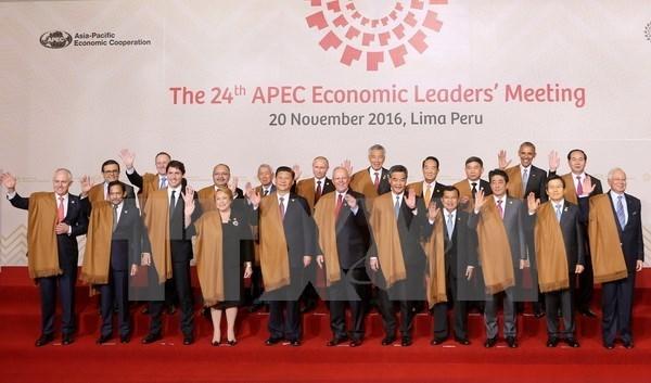 Des responsables vietnamiens estiment le succes du 24e Sommet de l'APEC a Perou hinh anh 1
