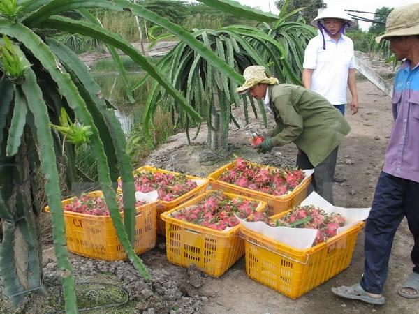 Promotion du commerce des produits agricoles, sylvicoles et aquatiques Vietnam-Australie hinh anh 1