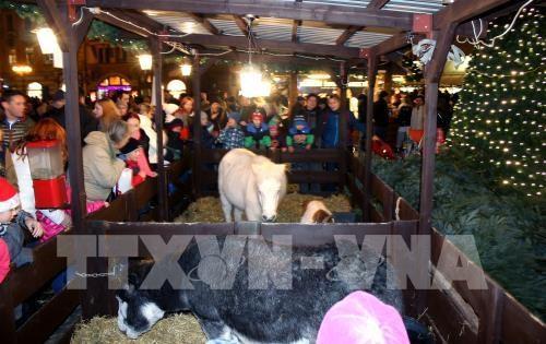 Le Vietnam participe activement a la foire de Noel a Prague hinh anh 1