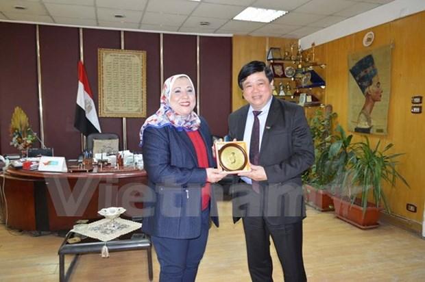 Vietnam-Egypte promeuvent leur cooperation dans la radiodiffusion hinh anh 1