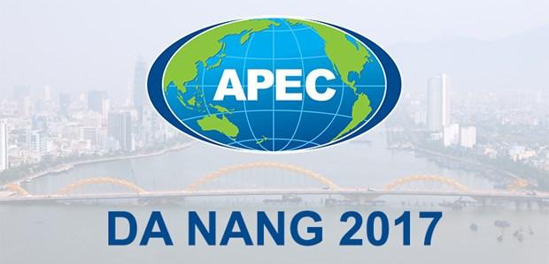 Da Nang se prepare bien a la Semaine de l'APEC 2017 hinh anh 1