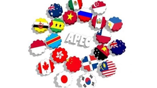 APEC 2017 : Hanoi accueillera la reunion informelle des hauts fonctionnaires hinh anh 1