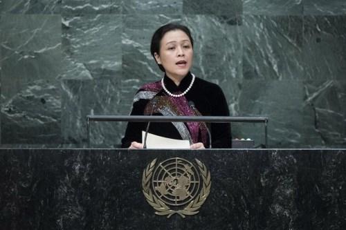 Le Vietnam present a la seance pleniere de l'AG sur les oceans et le droit de la mer hinh anh 1