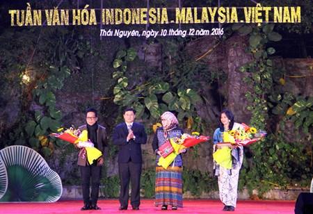 Cloture de la Semaine culturelle Malaisie-Indonesie-Vietnam hinh anh 1