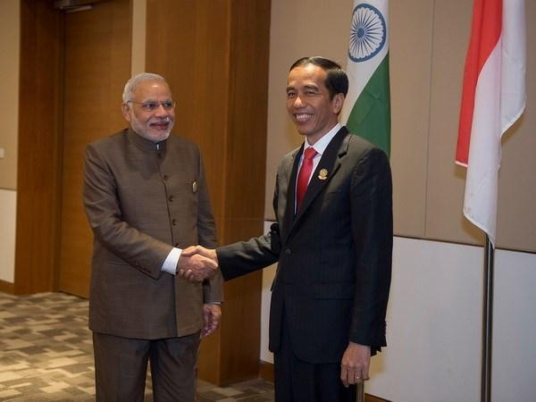 Inde et Indonesie promeuvent leur cooperation dans l'economie et le commerce hinh anh 1