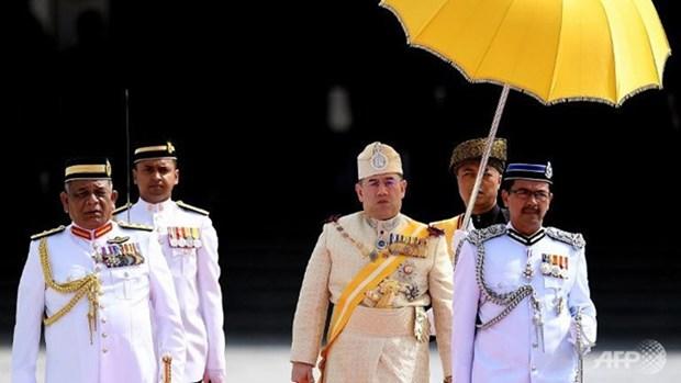 La Malaisie couronne un nouveau roi hinh anh 1