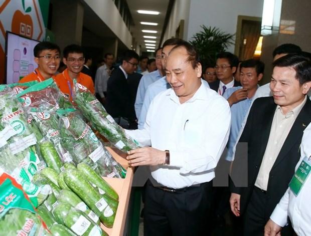 Le Premier ministre veut faire du Vietnam un pays puissant dans l'agriculture hinh anh 1