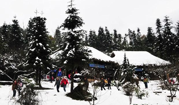 Bientot une Fete de l'hiver a Sa Pa hinh anh 1
