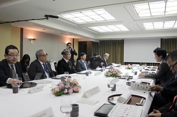 Le Japon renforce les echanges culturels avec l'ASEAN hinh anh 1