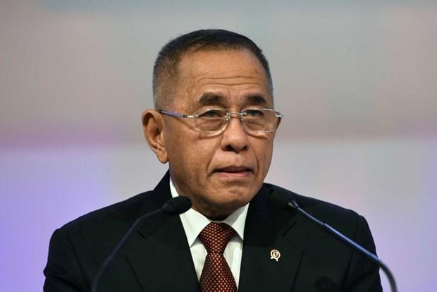 L'Indonesie et la Suede approfondissent la cooperation dans la defense hinh anh 1