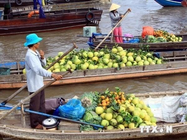 Le festival international du delta du Mekong donne rendez-vous en mars prochain hinh anh 1