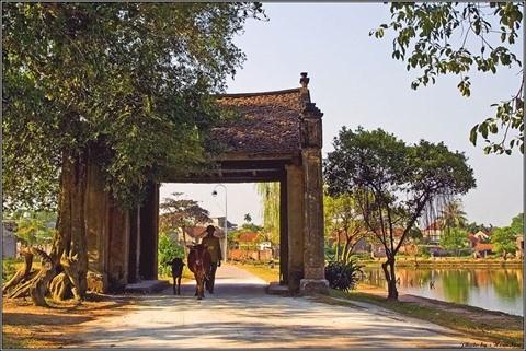 Duong Lam, un village traditionnel typique en banlieue de Hanoi hinh anh 1
