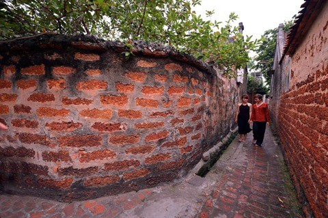 Duong Lam, un village traditionnel typique en banlieue de Hanoi hinh anh 2
