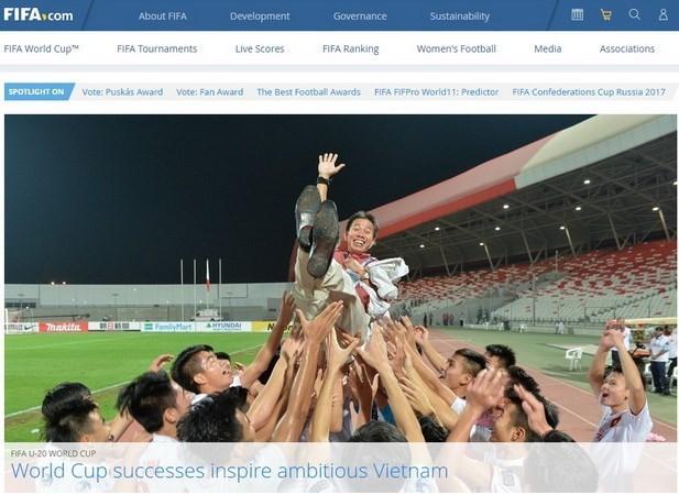 La FIFA felicite les performances du football vietnamien en 2016 hinh anh 1