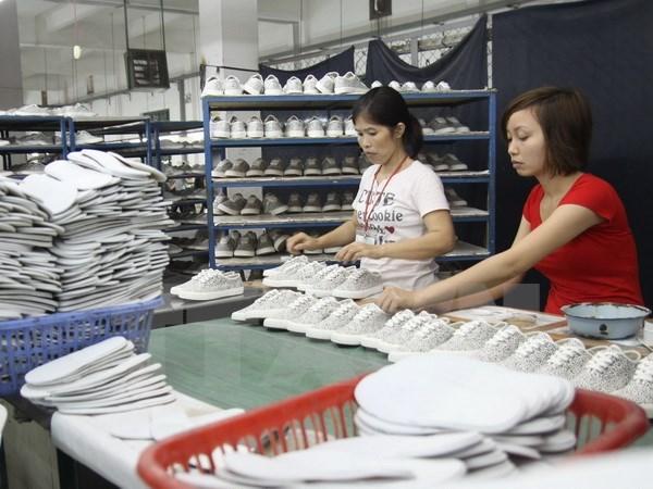 Le secteur du cuir et des chaussures table sur 18 milliards de dollars d'exportations hinh anh 1