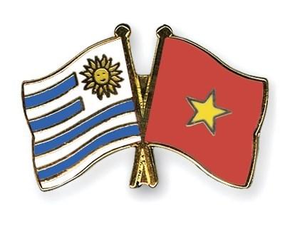 Inauguration du bureau du consulat d'Uruguay a Ho Chi Minh-Ville hinh anh 1