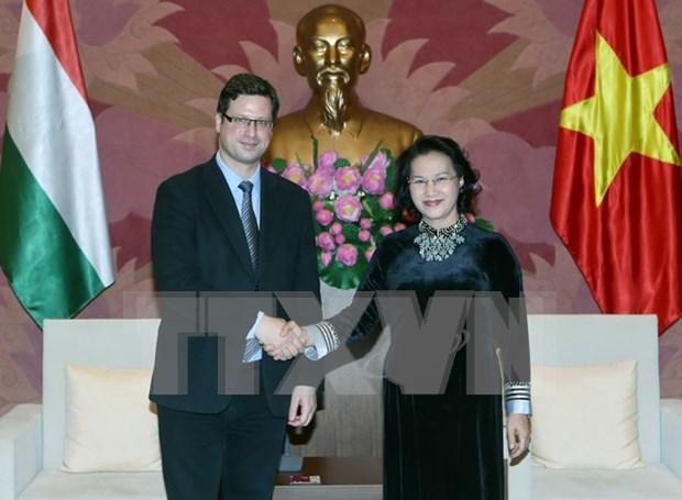 Promotion de la cooperation legislative Vietnam-Hongrie hinh anh 1