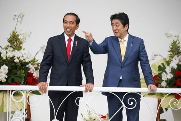 Japon et Indonesie renforcent leur cooperation dans la securite maritime hinh anh 1