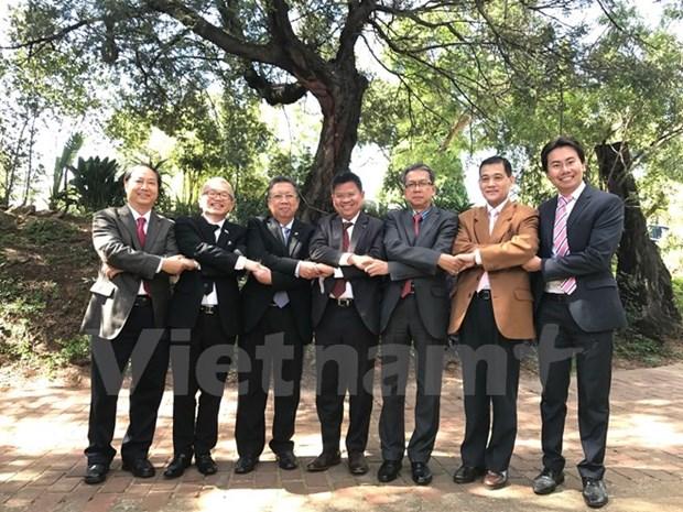 S'orienter vers la celebration des 50 ans de la fondation de l'ASEAN en Afrique du Sud hinh anh 1