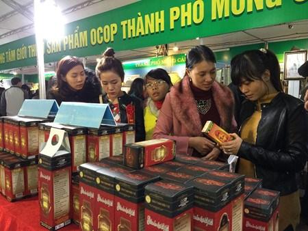 Activites a l'occasion du Tet a Quang Ninh et Long An hinh anh 1