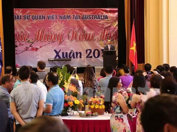 Les Vietnamiens a l'etranger accueillent le Nouvel An lunaire hinh anh 1