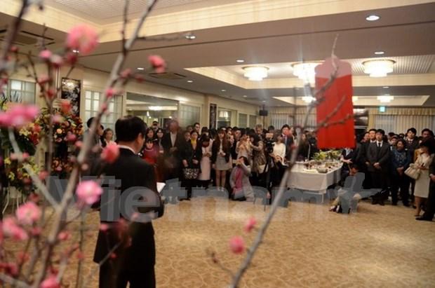 Les Vietnamiens a l'etranger accueillent le Nouvel An lunaire hinh anh 2