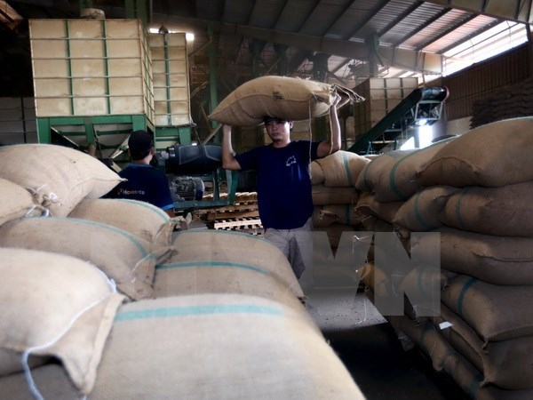 Baisse des exportations de produits agro-sylvi-aquacoles en janvier hinh anh 1