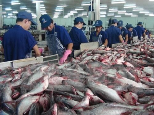 Le Vietnam exporte 518 millions de dollars de produits aquatiques en janvier hinh anh 1