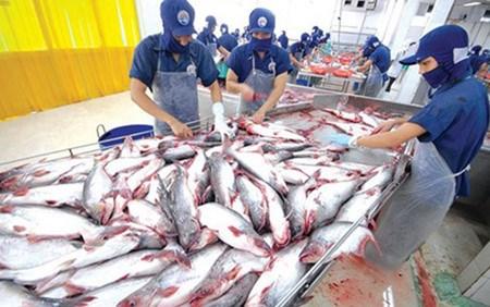 2017 : une bonne annee pour l'aquaculture hinh anh 1